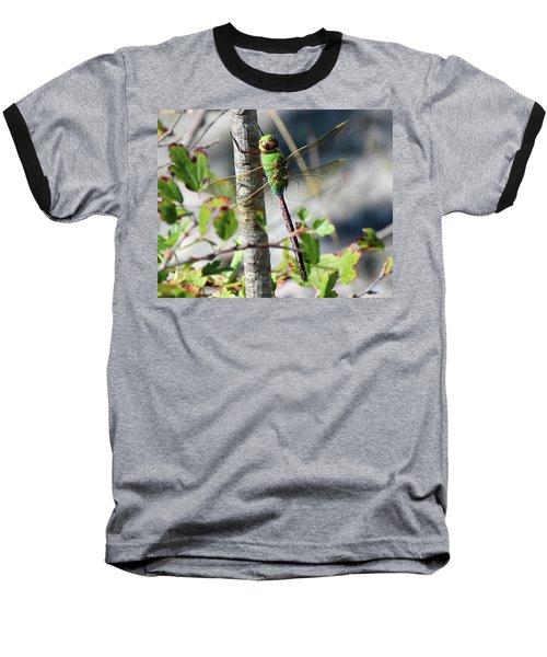 Darner Baseball T-Shirt