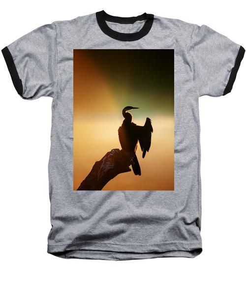 Darter Bird With Misty Sunrise Baseball T-Shirt