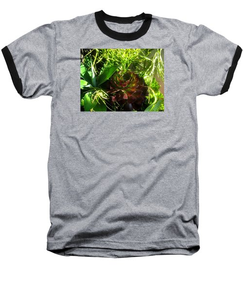 Dawning Succulents Baseball T-Shirt