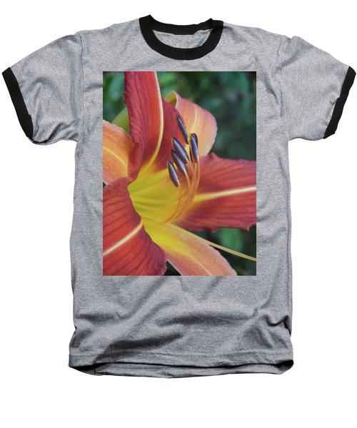 Daylilies Orange Baseball T-Shirt by Rebecca Overton