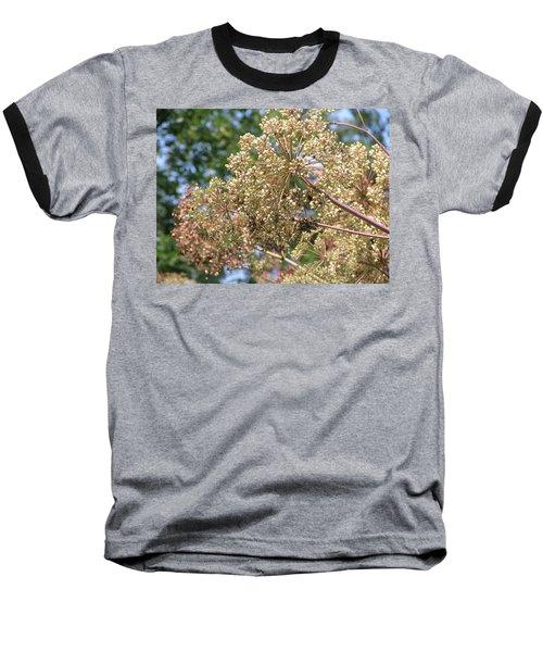 Dazzle Baseball T-Shirt