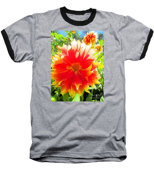 Dazzling Dahlia Baseball T-Shirt by Elizabeth Dow