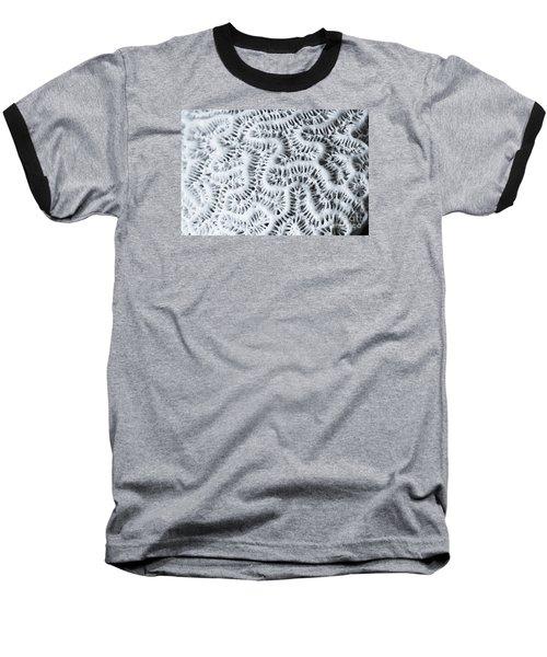 Dead Brain Coral Baseball T-Shirt