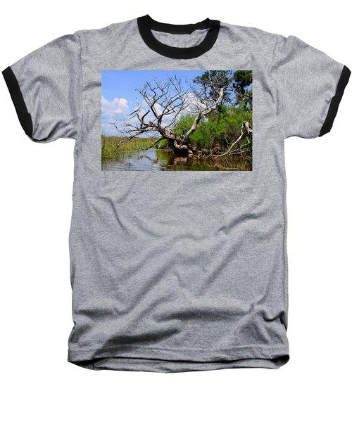 Dead Cedar Tree In Waccasassa Preserve Baseball T-Shirt