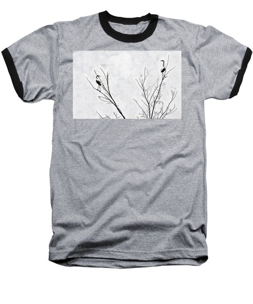 Dead Creek Cranes Baseball T-Shirt by Jim Proctor