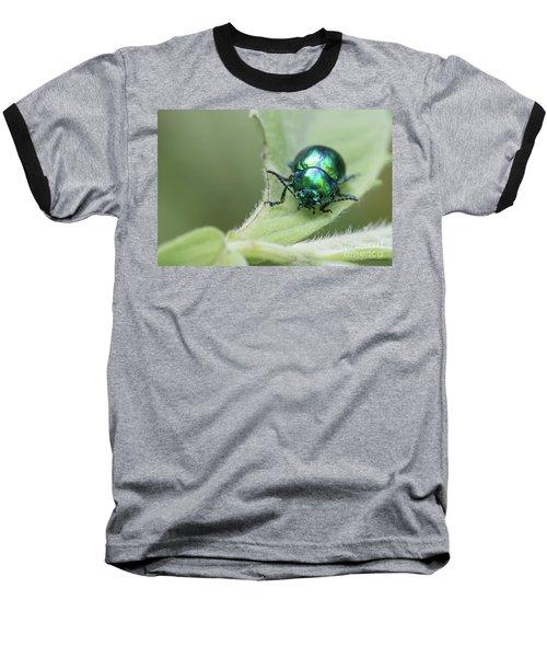 Dead-nettle Leaf Beetle - Chrysolina Fastuosa Baseball T-Shirt by Jivko Nakev