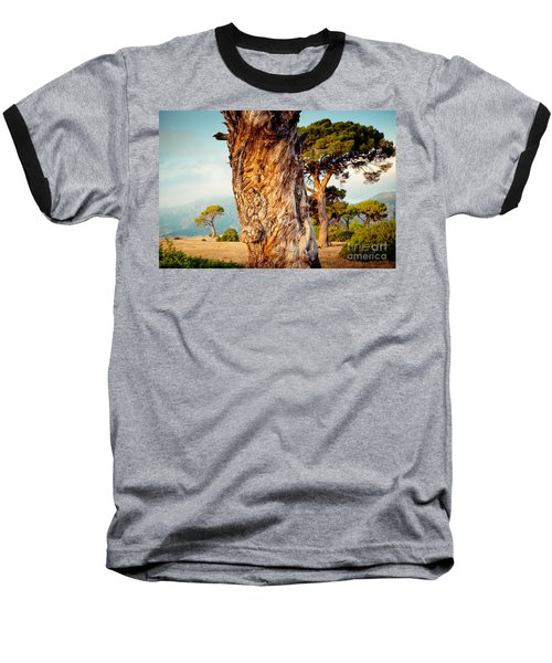 Dead Tree And Forest  Baseball T-Shirt