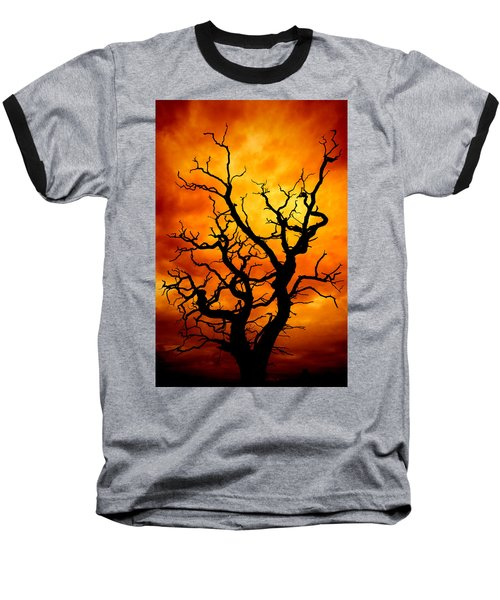 Dead Tree Baseball T-Shirt by Meirion Matthias