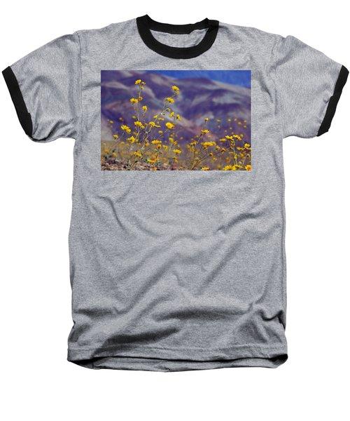 Death Valley Superbloom 103 Baseball T-Shirt