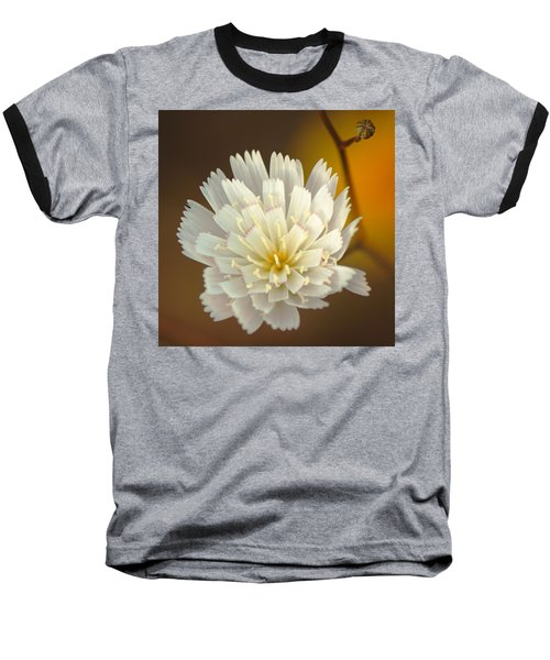 Baseball T-Shirt featuring the photograph Death Valley Superbloom 203 by Daniel Woodrum