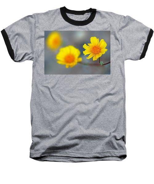 Death Valley Superbloom 204 Baseball T-Shirt