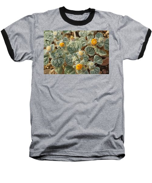 Baseball T-Shirt featuring the photograph Death Valley Superbloom 302 by Daniel Woodrum