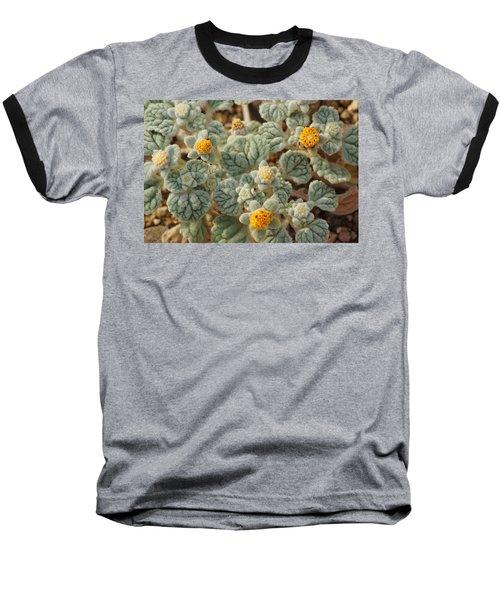 Death Valley Superbloom 302 Baseball T-Shirt
