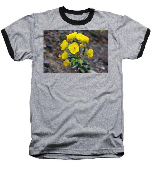 Death Valley Superbloom 306 Baseball T-Shirt