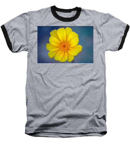 Death Valley Superbloom 403 Baseball T-Shirt
