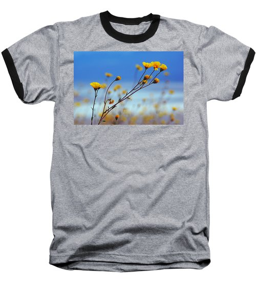 Death Valley Superbloom 502 Baseball T-Shirt