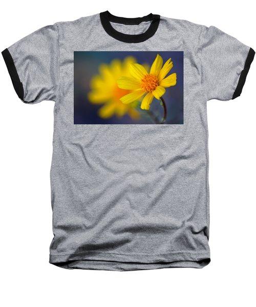 Death Valley Superbloom 503 Baseball T-Shirt