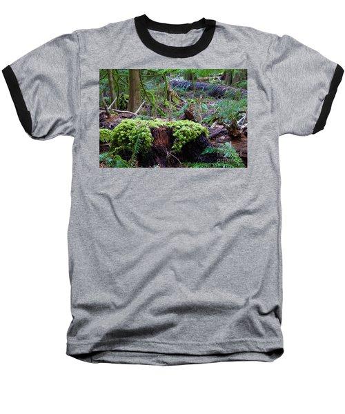 Decomposers Baseball T-Shirt