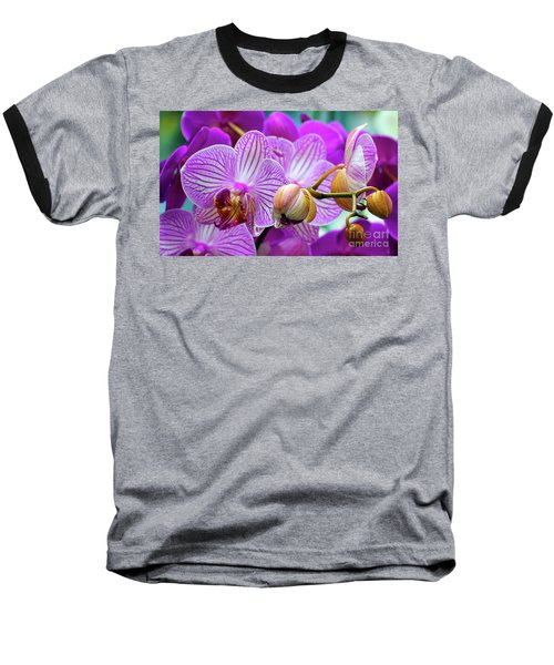 Decorative Fuschia Orchid Still Life Baseball T-Shirt