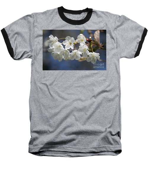 Deep Blue  Cherry Blossom Baseball T-Shirt