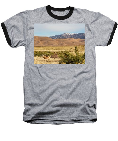 Baseball T-Shirt featuring the photograph Deer And The Colorado Sand Dunes by James BO Insogna