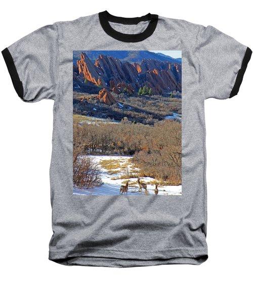 Deer At Roxborough Baseball T-Shirt