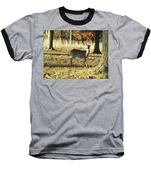 Deer At Valley Forge Baseball T-Shirt
