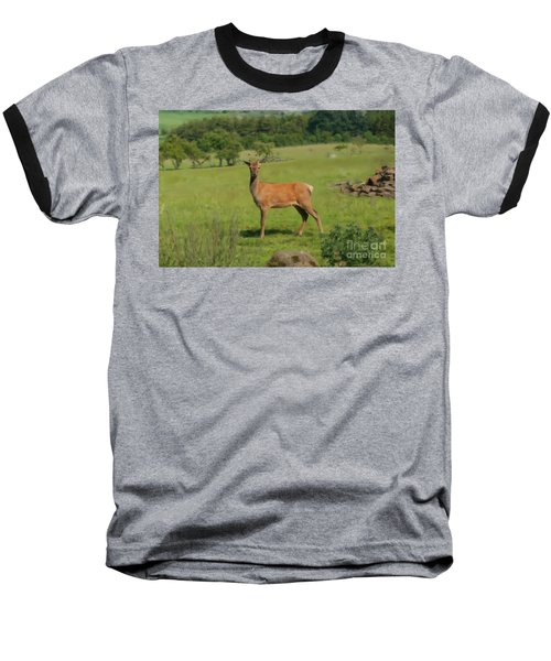 Deer Calf. Baseball T-Shirt