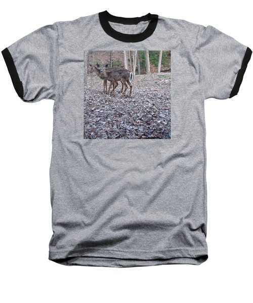 Deer Deer Me  -comp- Baseball T-Shirt by Cliff Spohn