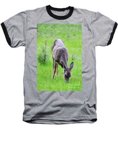 Deer In The Field Baseball T-Shirt by Debby Pueschel