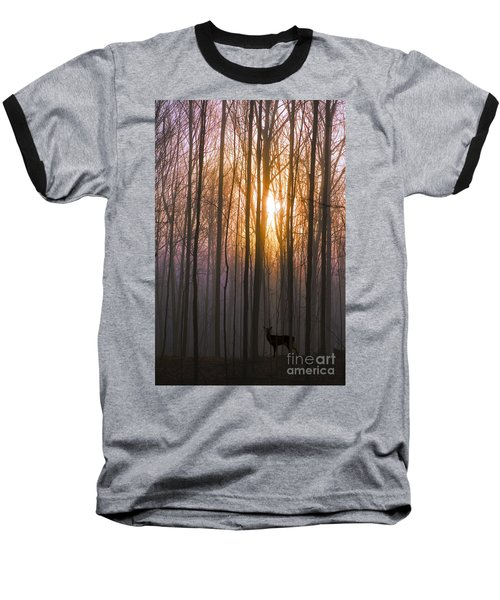Deer In The Forest At Sunrise Baseball T-Shirt
