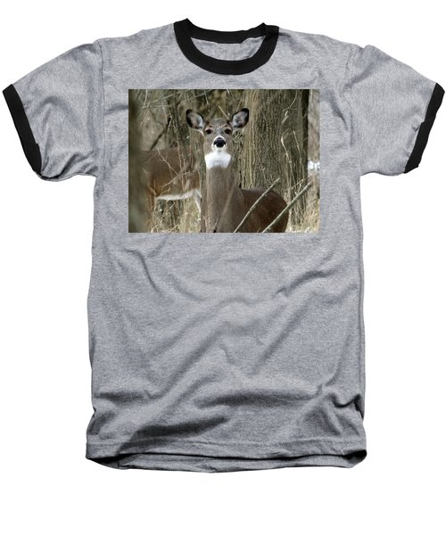 Deer In The Forest Baseball T-Shirt