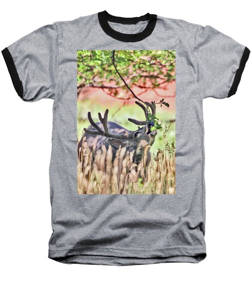 Deer In The Orchard Baseball T-Shirt