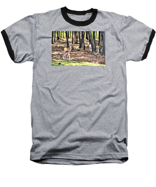 Deer In The Summer Forest Baseball T-Shirt by James Potts