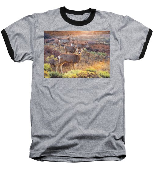Baseball T-Shirt featuring the photograph Deer In The Sunlight by Darren White