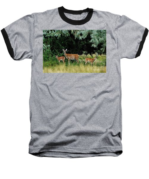 Baseball T-Shirt featuring the photograph Deer Mom by Larry Campbell