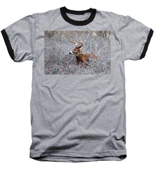 Deer On A Frosty Morning  Baseball T-Shirt by Nancy Landry