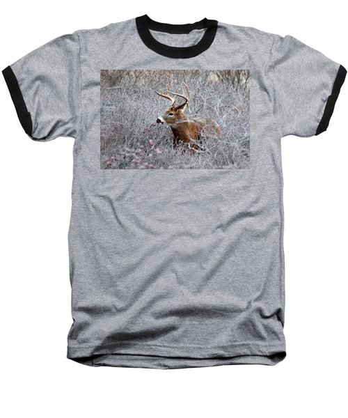 Deer On A Frosty Morning  Baseball T-Shirt