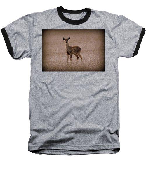 Deerfield Baseball T-Shirt