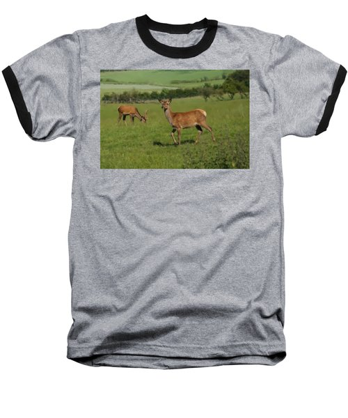 Deers On A Hill Pasture. Baseball T-Shirt