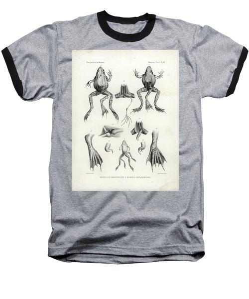 Deformed Frogs - Historic Baseball T-Shirt