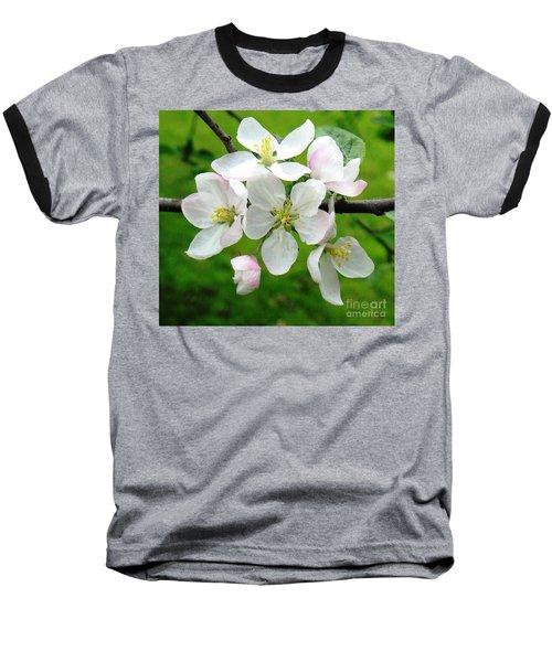 Delicate Apple Blossoms Baseball T-Shirt