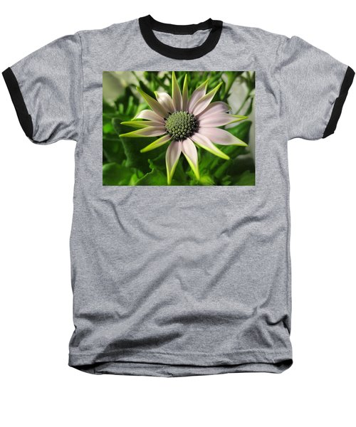 Delicate Dreamer Baseball T-Shirt