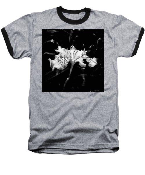 Delicate Baseball T-Shirt by Karen Stahlros