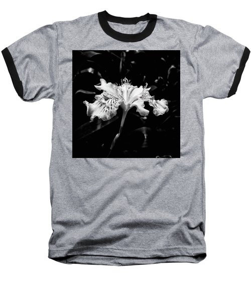 Delicate Baseball T-Shirt