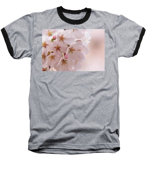 Delicate Spring Blooms Baseball T-Shirt