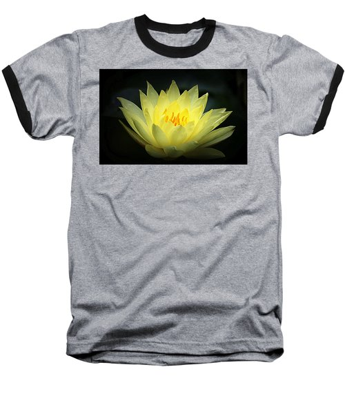 Delicate Water Lily Baseball T-Shirt