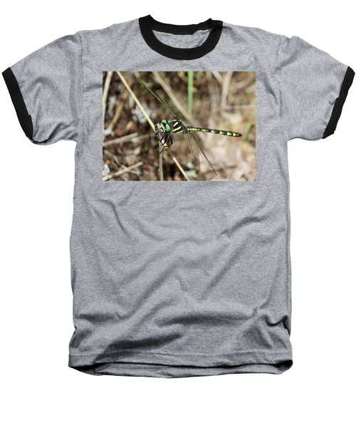 Delta-spotted Spiketail  Male Baseball T-Shirt