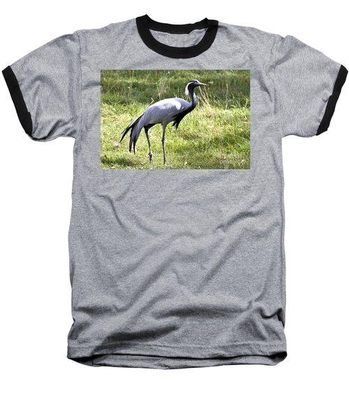 Baseball T-Shirt featuring the photograph Demoiselle Crane by Teresa Zieba