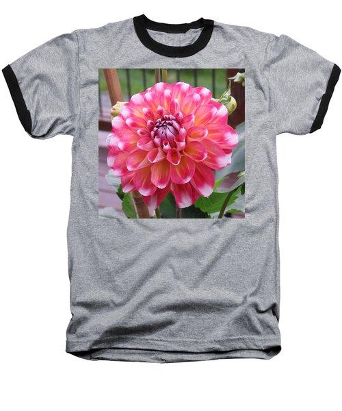 Denali Dahlia Baseball T-Shirt